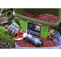 CC Moore Bloodworm Session Pack 2.5 kg